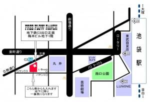 FFRmap11